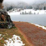 Какой компании доверить уход за озером в холодное время года?