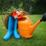 Работа в огороде – о чем не забыть в июне